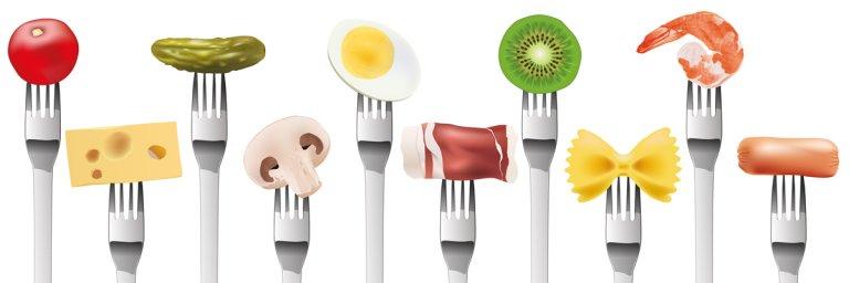 servicio de alimentacion nutricion